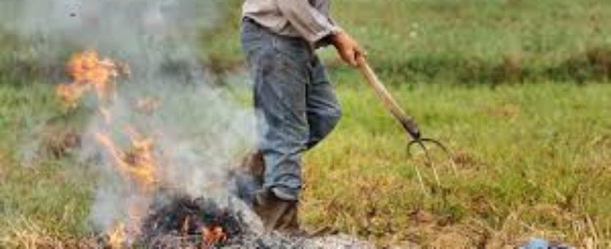 seravezza – divieto assoluto di abbruciamento di residui vegetali fino al 31 marzo