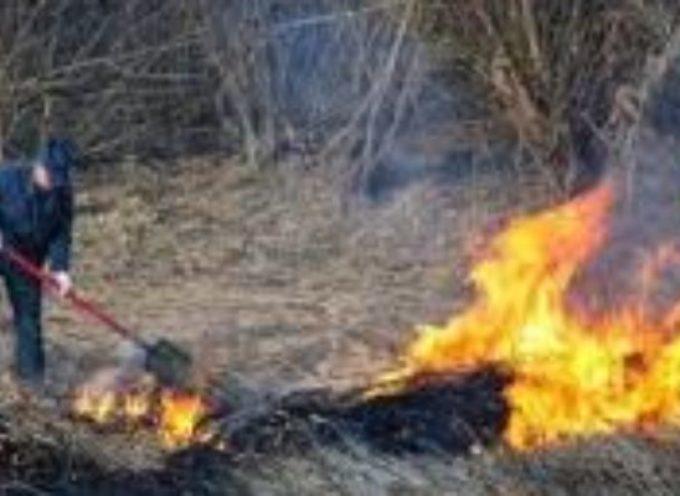 lucca – Rischio incendi boschivi: non si possono accendere fuochi all'aperto fino al 31 marzo