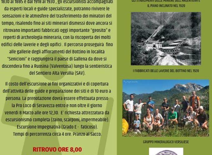 Gruppo Mineralogico e Paleontologico Versiliese – Gita alle Miniere del Bottino