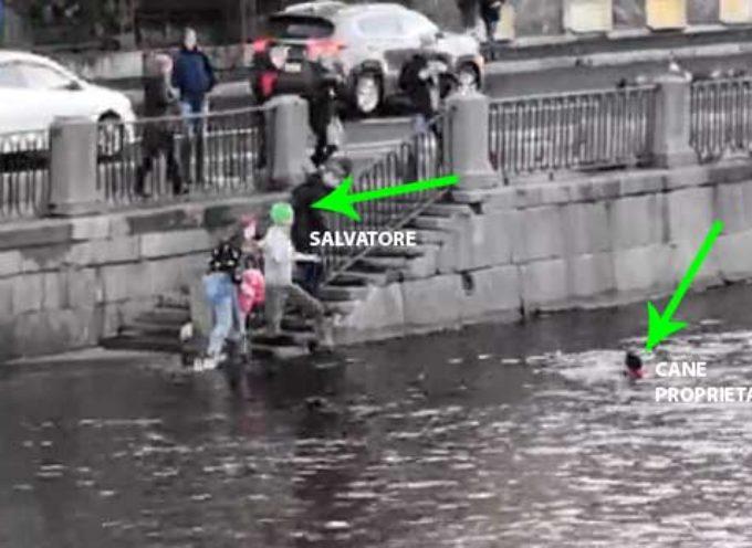 Russia: uomo salva proprietario e cane dalle gelide acque del Fontanka