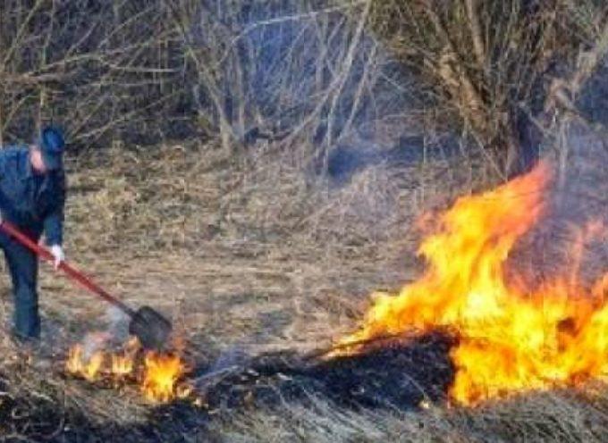 Toscana – Dal 21 Marzo al 31 Marzo Divieto assoluto di abbruciamenti.