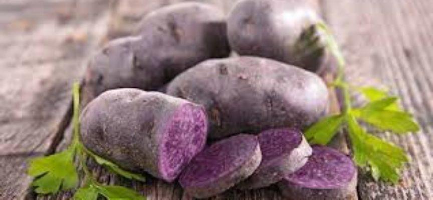 Patate viola e patate blu, una presentazione
