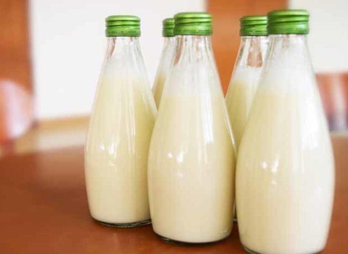 Latte di pisello: proprietà, valori nutrizionali e come prepararlo in casa