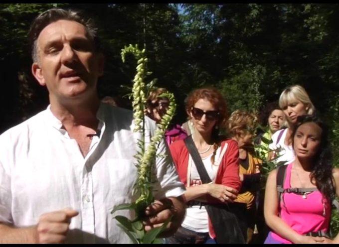 Marco Pardini e gli erbi velenosi[video]