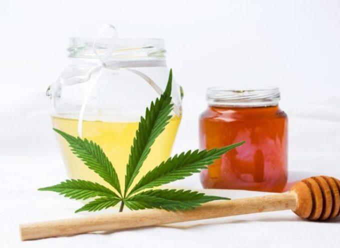 Miele alla canapa: tutti i benefici del nuovo prodotto a base di zenzero, limone e CBD