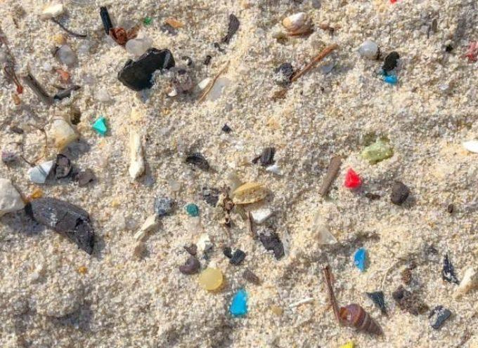 La plastica dei mari può farci ammalare. Funge da zattera per colera, E.coli e batteri patogeni