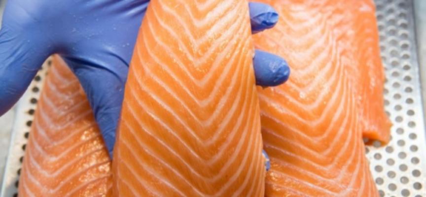 Listeria nei prodotti al salmone, Coop, Migros, Volg, negozi Prima e i punti vendita TopShop lo ritirano dagli scaffali.