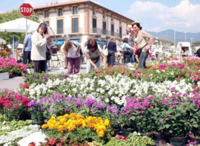 1 maggio con Marina in Fiore, a Tonfano è sbocciata la primavera