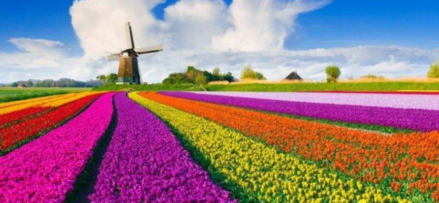 Primavera 2019: ecco le 5 citta' migliori da visitare!