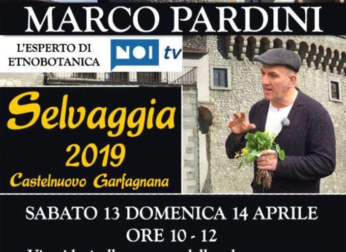 MARCO PARDINI vi aspetta a Selvaggia,  per la festa delle erbe. a Castelnuovo di Garfagnana.