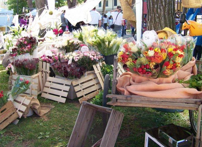 Questo Weekend vieni a Porcari in Fiore