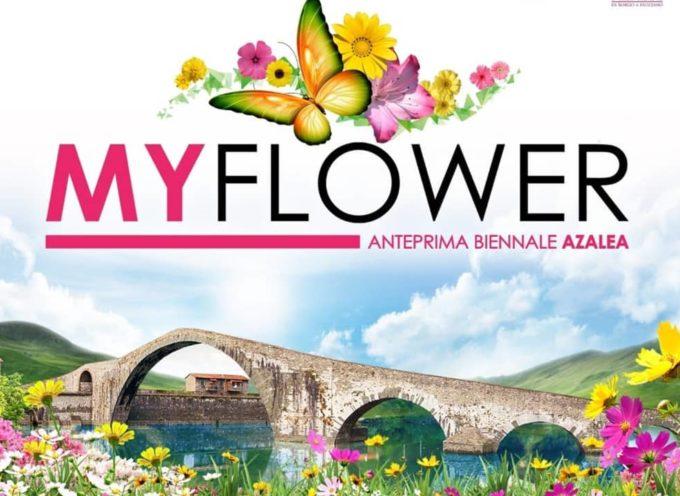 BORGO A MOZZANO – PRESENTATA LA TERZA EDIZIONE DEL MY FLOWER
