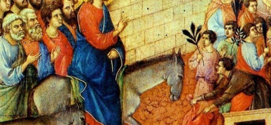 La Domenica delle Palme celebra un episodio del Vangelo, quello in cui Cristo viene accolto a Gerusalemme