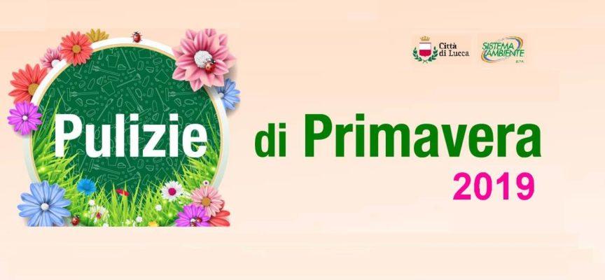 Pulizie di Primavera: questa settimana gli operatori di Sistema Ambiente saranno presenti a Maggiano e Nozzano