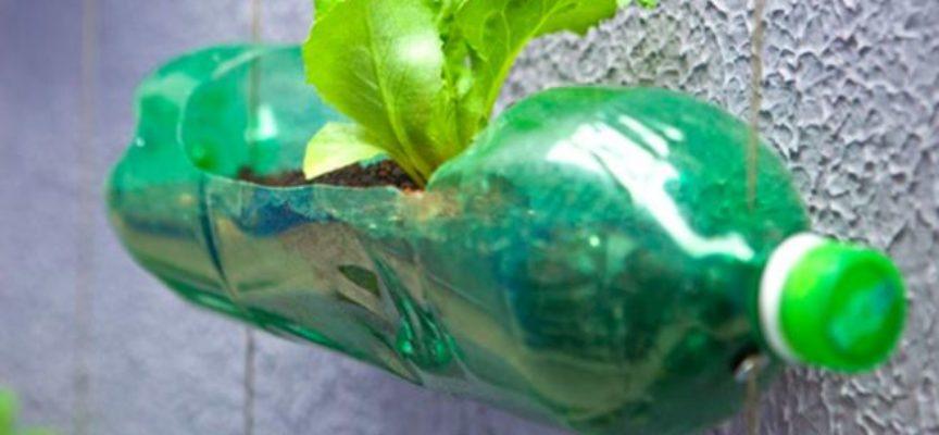 Riuso della plastica: alcuni modi ingegnosi e semplici per riutilizzare gli imballaggi