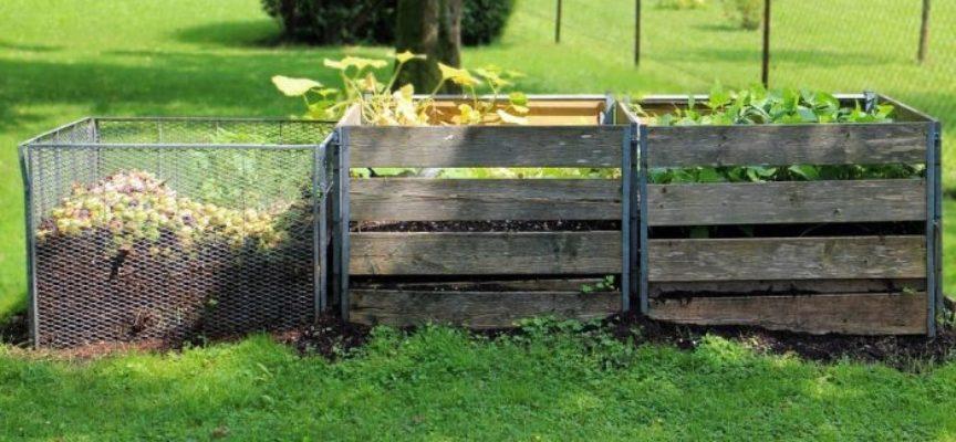 Compost domestico. Come fare compostaggio nel modo giusto