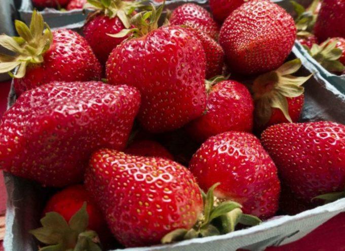 la frutta e la verdura più contaminate dai pesticidi che bisognerebbe sostituire con quelle biologiche