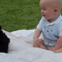 Bambino e cucciolo in momenti di coccole! Video