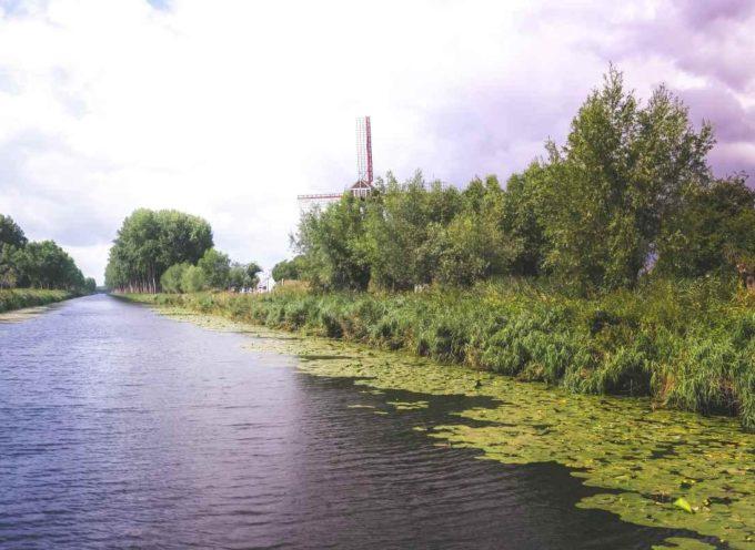 I torrenti europei hanno acque talmente inquinate da poter essere usate come pesticidi