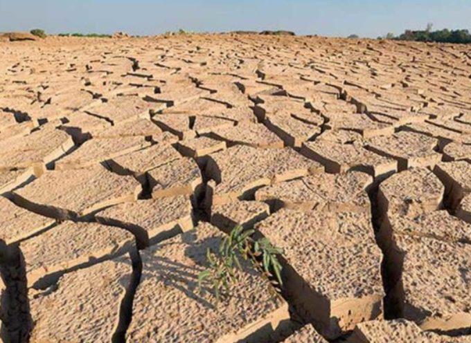 "Clima. Anabio-Cia, agricoltura ""bio"" riduce effetto serra e tutela suoli"
