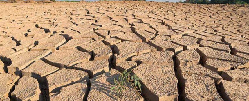 Sviluppo sostenibile:  taglio del 40% delle emissioni di carbonio