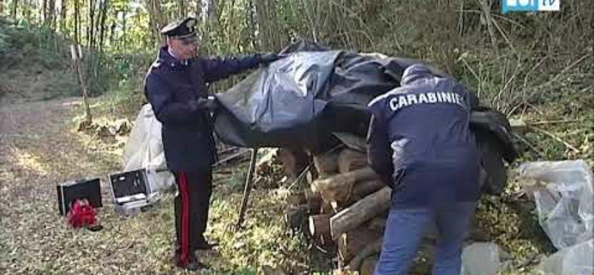 Arrestato dai carabinieri il cacciatore di Ghivizzano
