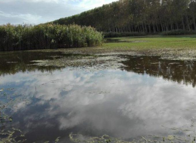 Canale della Bufalina, grazie a 350mila euro il Consorzio potrà impermeabilizzare il canale