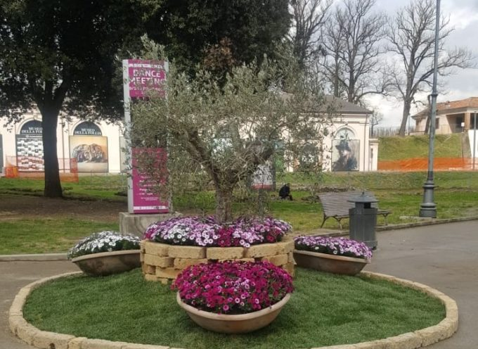 Aiuole e fioriete in dieci piazze e luoghi storici della cittàper festeggiare Santa Zita e la primavera