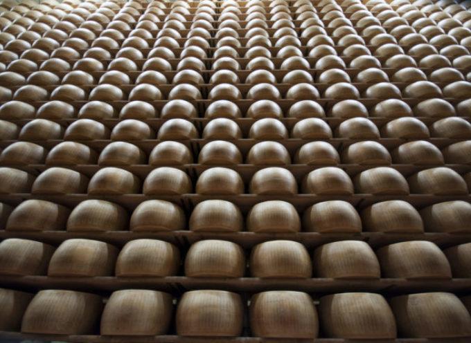 Parmigiano Reggiano DOP. Fatturato record, vola l'export.