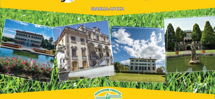 L'app Lucca4You è la partnership della Marcia delle Ville e guida dei percorsi, ville e natura
