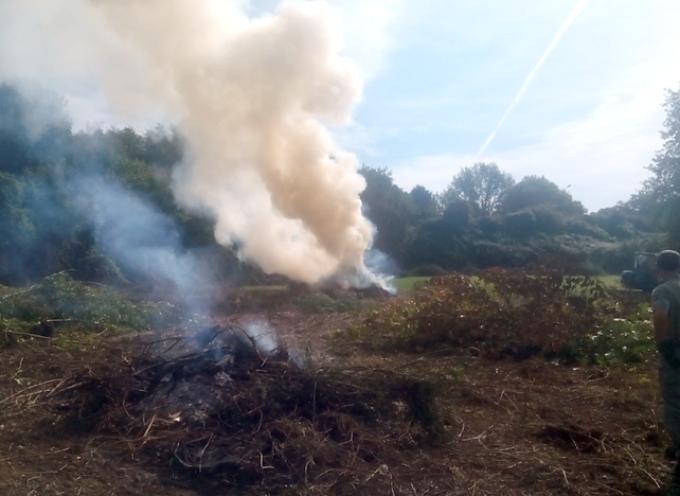 SERAVEZZA – prorogato al 10 aprile il divieto assoluto di abbruciamento di residui vegetali