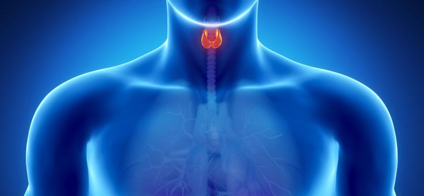I diritti di chi soffre di tiroide