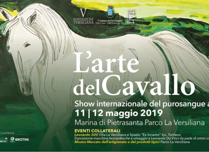 L'arte del Cavallo – lo show internazionale del purosangue arabo