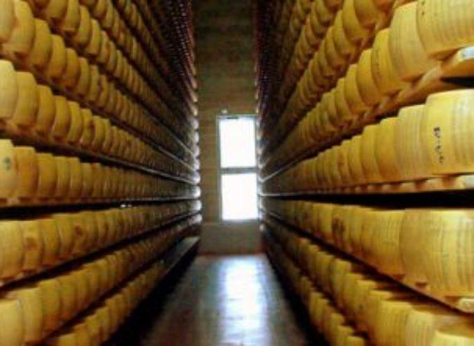 """Adesso la Francia """"ci ruba"""" il Parmigiano Reggiano"""