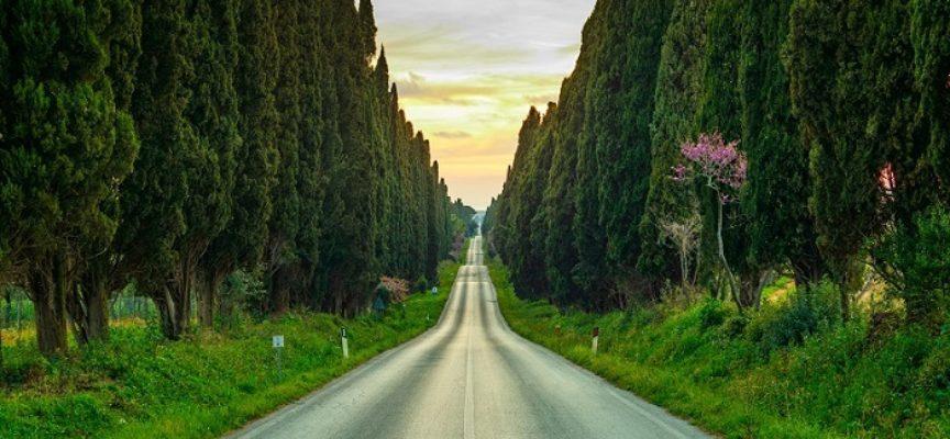 Il Santo del giorno, 20 Maggio: S. Guido della Gherardesca