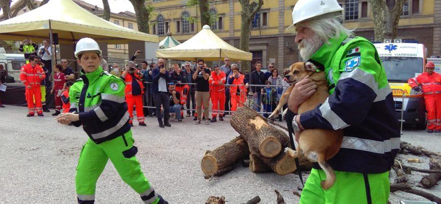 Protezione Civile, Stop Definitivo all'Utilizzo di Volontari in Sagre e Manifestazioni.