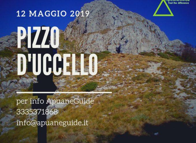 ESCURSIONE SUL PIZZO D'UCCELLO