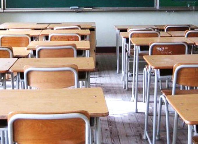 PORCARI – Questa mattina alcune mamme hanno segnalato la presenza di formiche in una classe della scuola primaria.