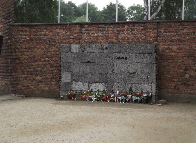 Auschwitz Institute for Peace and Reconciliation (AIPR) presenta Artivism: The Atrocity Prevention Pavilion