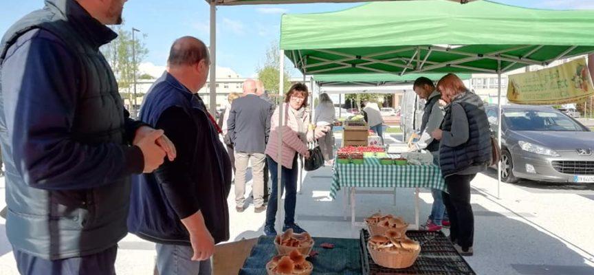 Mercoledì 22 maggio in piazza Aldo Moro si terrà il mercato contadino di filiera corta