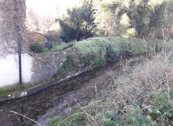 Rio Sana, si mette in sicurezza il tratto di Segromigno (zona nord Capannorese)
