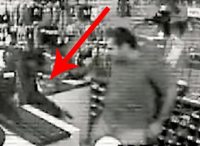 L'uomo punta la pistola alla cassa, ma il suo cane era nelle vicinanze