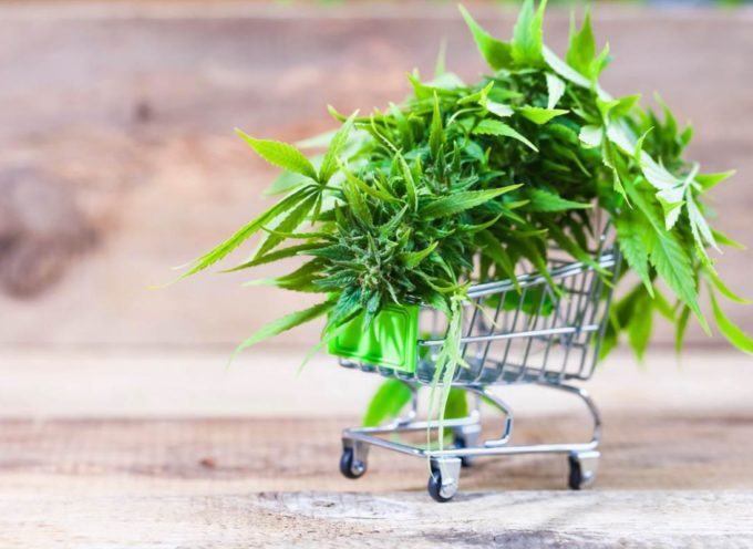 Cannabis light, chiusi 3 negozi nelle Marche. In arrivo la direttiva per eliminarli tutti