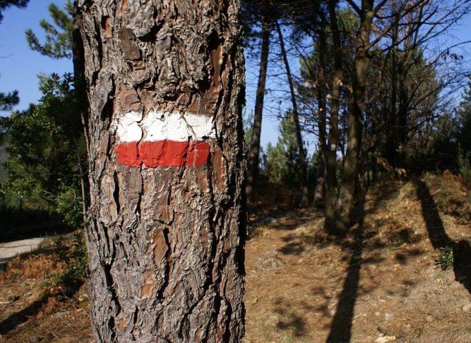 CAPANNORI – Martedì 14 maggio un incontro sulla manutenzione dei sentieri escursionstici