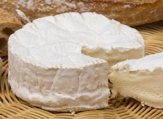 """Escherichia coli nel formaggio francese St. Marcellin Crémier: """"Questo formaggio non s'ha da mangiare."""