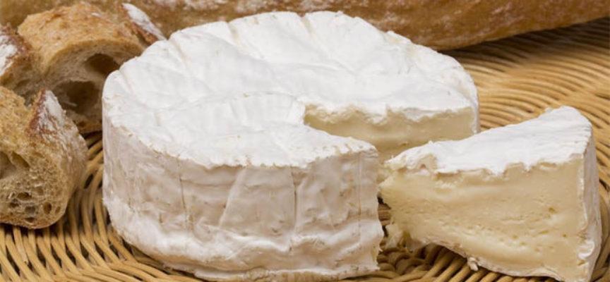 Ministero Salute, sospetta contaminazione di formaggi francesi
