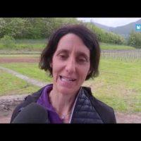 Una giornata (mondiale) dedicata alla Biodiversità in… Garfagnana