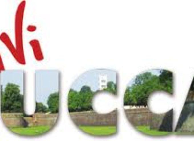 Amico Museo Lucca 2019: aperture straordinarie, mostre, laboratori e visite guidate in programma dal 10 maggio al 2 giugno