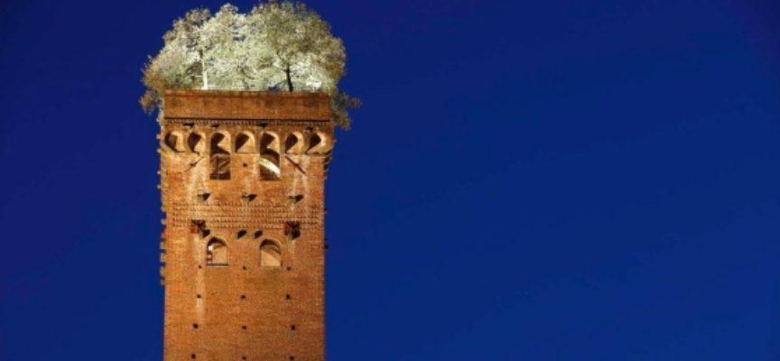 LUCCA – Amico Museo: gli appuntamenti in attesa del 18 maggio