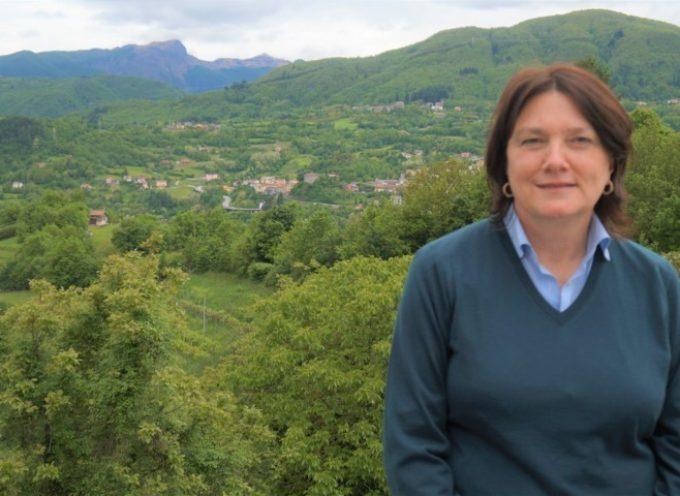 Raffaella Mariani contraria all'ipotesi di un Pirogassificatore in Valle